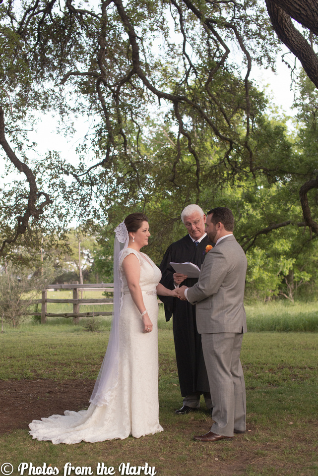 Austin, Texas, TX, Chappel Lodge, Vineyard, Vineyards, outdoor, lace, lacy, gown, dress, veil, grey, gray, tux, tuxedo, flowers, tree, trees, flower, wild, silly, fun, romantic, outdoors, green, blue, white, cap sleeves, train, cocktail hour, ceremony, candle, lighting, judge, family, families, friends, friend, Texan, Texans, UT, University of Texas, college, childhood, bride, groom, wedding, marriage, bridesmaids, bridesmaid, maid of honor, matron of honor, groomsmen, best man, Sessions, Siller, sillathrilla, Mr and Mrs, reception, ceremony, aisle, flats, up-do, happy, happiness, nature, natural, wine, winery, dance, dancing, traditional, nontraditional, unity, union, wife, husband, Washington DC, DC, DC metro area, Maryland, MD, Virginia, VA, Nation's Capital, US, USA, United States, America, American, Capital, Capitol, Photographer, Photography, professional, Sara Alepin, Sara, Alepin, Hartenstine, Harty, Sara Hartenstine, Photos from the Harty