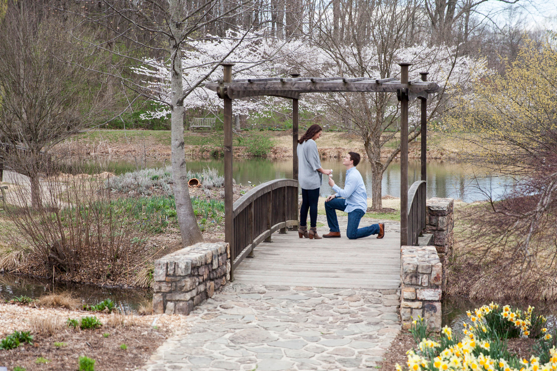 Ben + Sarah's Engagement | Photos from the Harty | Captured in public gardens in Virginia. Looking for proposal photography tips? We've got you covered!