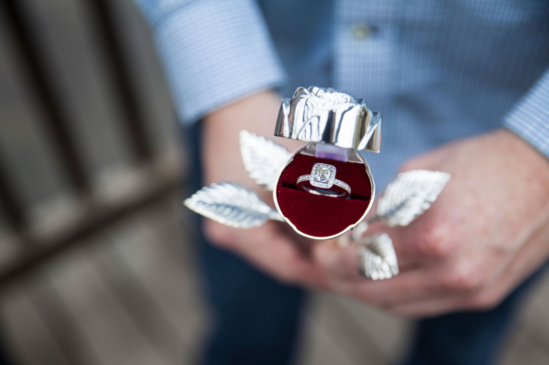 Ben + Sarah's Engagement | Photos from the Harty | How to plan the perfect proposal photography session