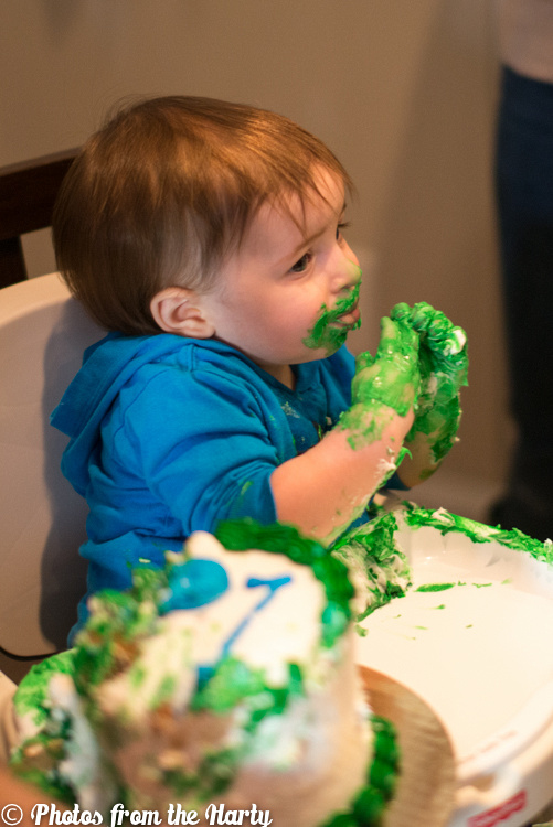 """Birthday, Dino, Dinosaur, Dinos, Dinosaurs, One, First, Blue, Green, Cake, Icing, Celebration, Celebrate, Celebrating, Photographer, Photography, Professional, Photographs, Photos, Photograph, Photo, Pic, Pictures, Pics, Picture, Image, Images, Boy, Guy, Little, Family, House, Home, Sara, Alepin, """"Sara Alepin"""", """"Photos from the Harty"""", Hartenstine, Harty, Sarah, Hartenstein, Hartenstien, Alpine, Love, Happy, Happily, Fun, Funny, Silly, Child, Children, Baby, Babies, Smash, Cookies, Toys, Gifts"""