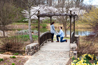 Cherry Blossoms, Proposal, Surprise, Park, Engagement, Engaged, Wedding, Photography, Photographer, Vienna, VA, Virginia